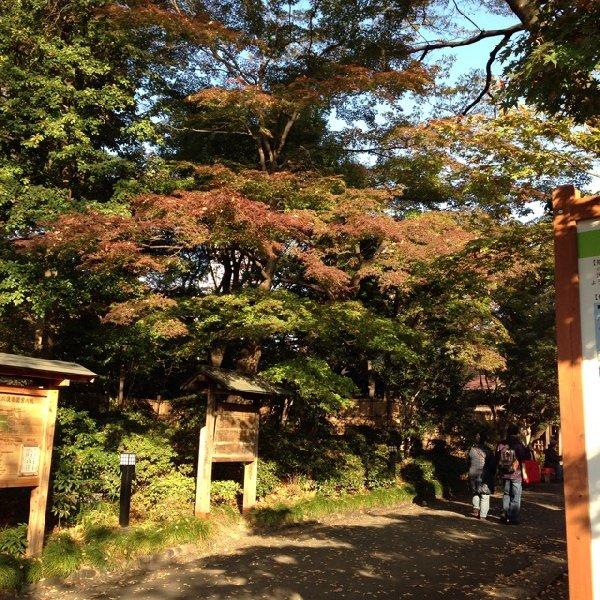 「小石川後楽園」近くの道 「後楽緑道」