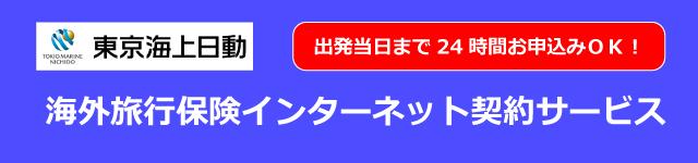 東京海上日動 インターネット専用タイプ